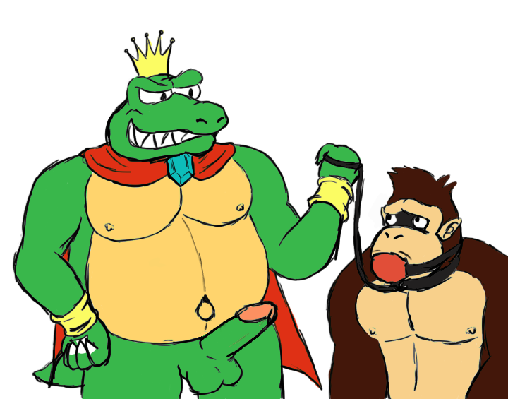 kong donkey and candy kong Mario and luigi partners in time princess shroob