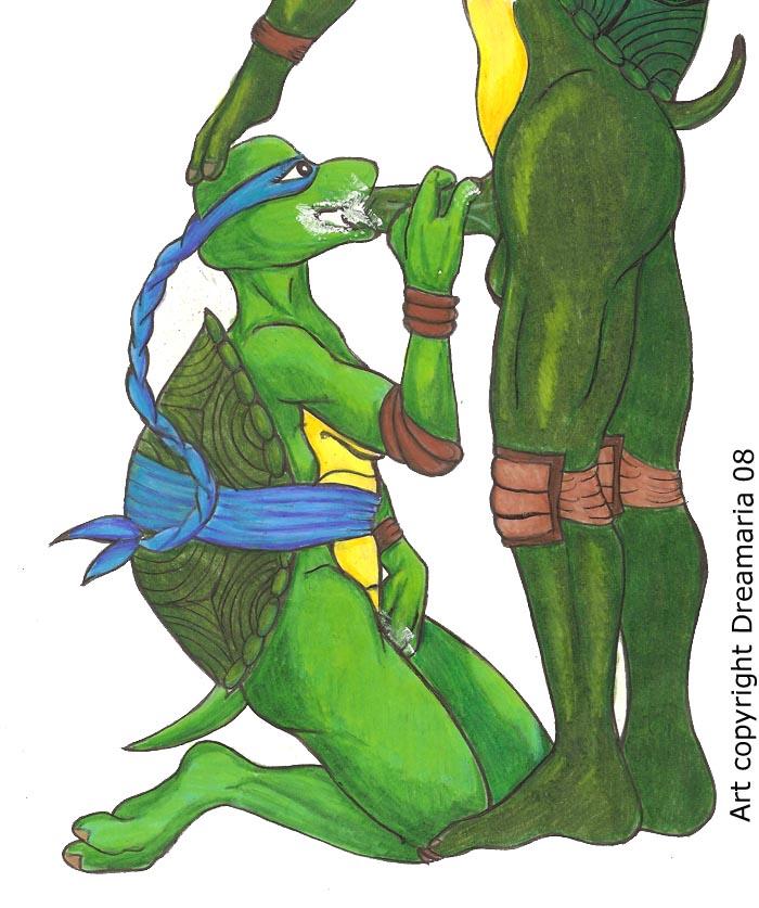 ninja venus milo de turtles Morgan le fay fate grand order