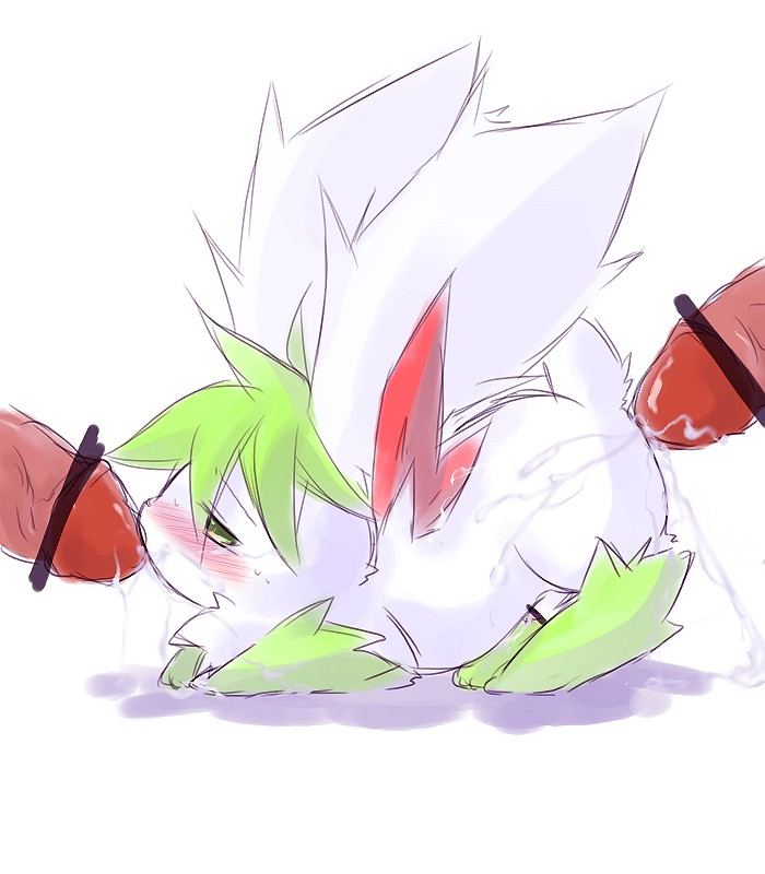 how form to shaymin get sky How to train your dragon fanfiction hiccup and astrid