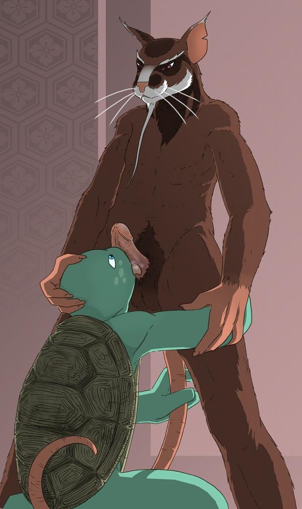 mutant teenage nude ninja turtles Wii fit trainer rule 63