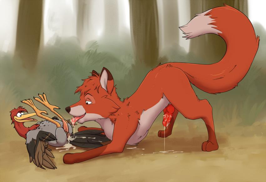 and the hound fox cash 2 Rain from spirit stallion of the cimarron