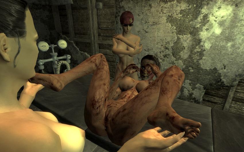 new nude male vegas fallout Fire emblem: blazing sword